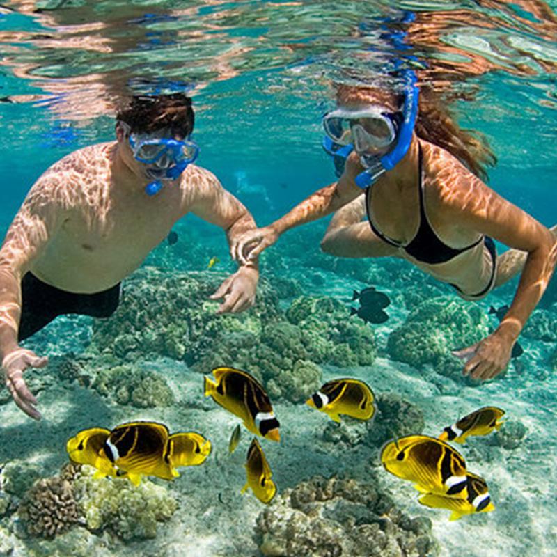 Snorkeling at Mnemba Atoll | Things to Do in Zanzibar